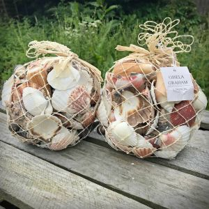 1kg of Mixed Seashells for Seaside Theme Decoration