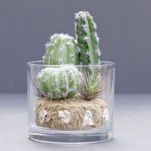 faux cacti plant in glass vase