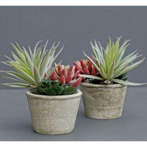 faux succulent cactus in pot