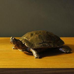 Vintage Golden Turtle Curio Ornament