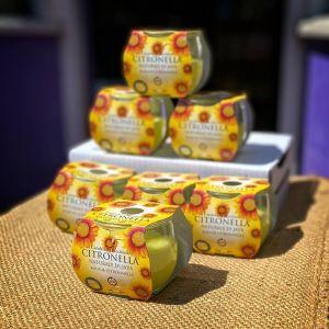 6 x Price's Citronella Candle Jars