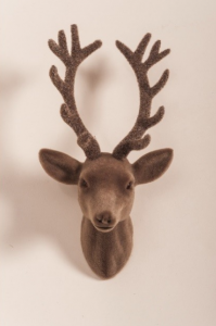 flock stag