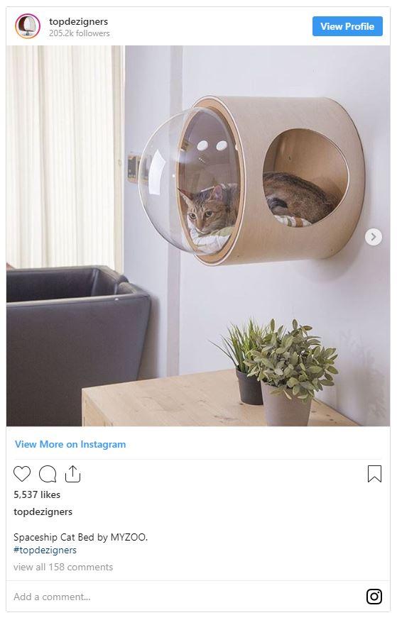 Quirky interior design